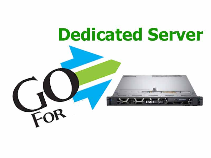 dedicated server 1gbps